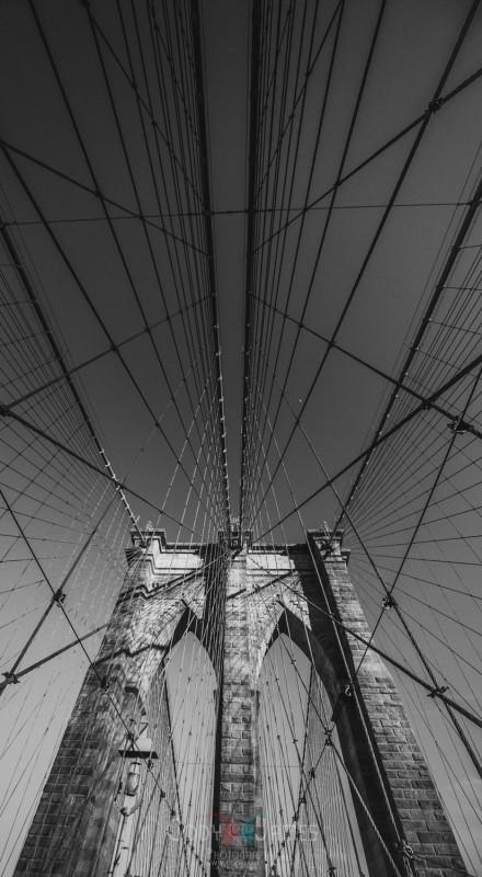 NYC VIII