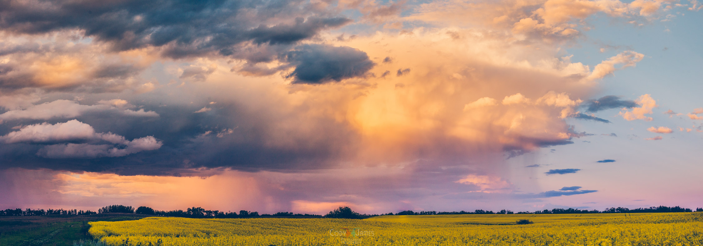 Alberta Landscapes-4