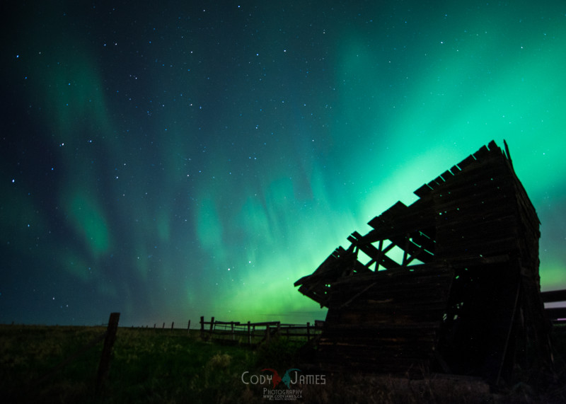 Alberta Northern Lights-11
