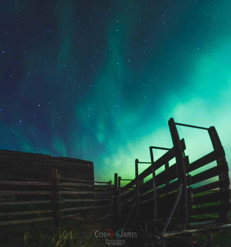 alberta aurora chasers