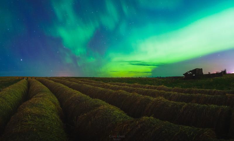 Aurora Alberta (4)