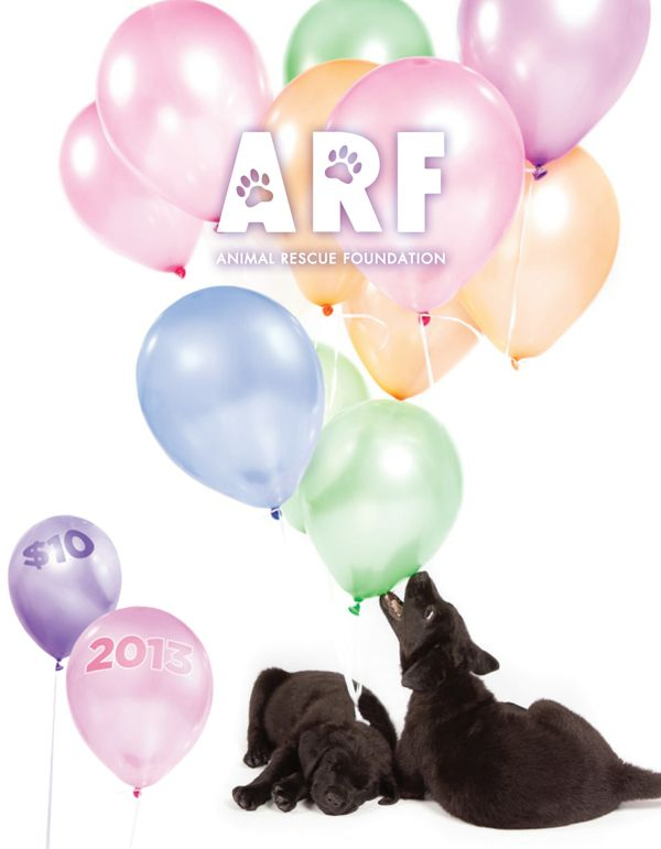 2013 ARF Calendar – Alberta Animal Rescue Foundation Calendar