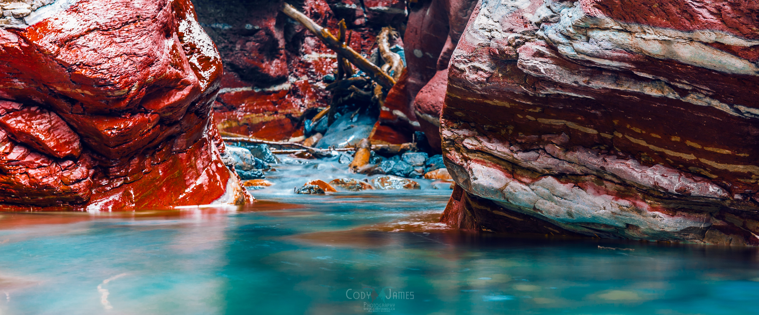 Calgary Photographer Cody James | Landscape Photographer