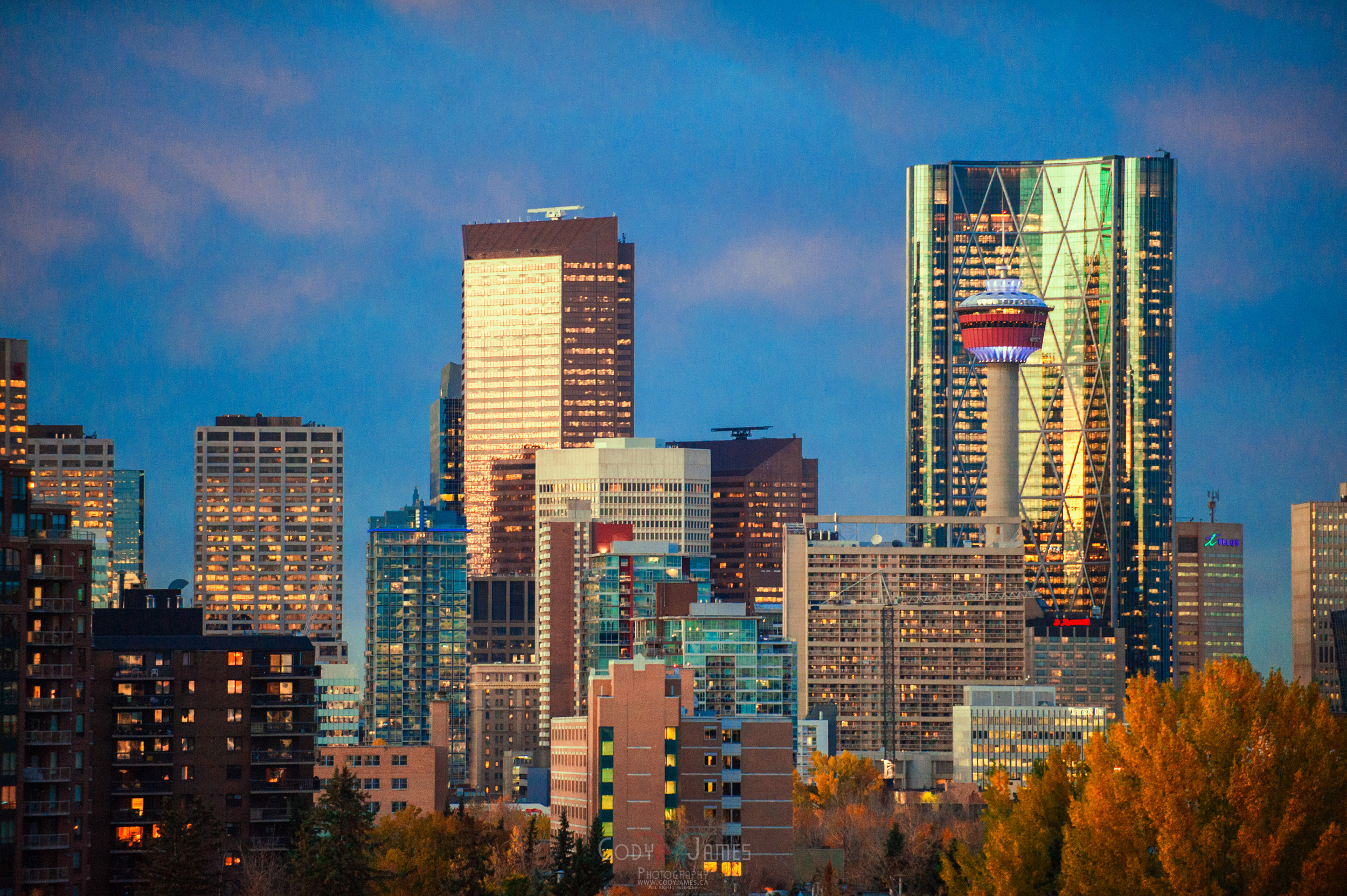 Calgary Art Photography-7
